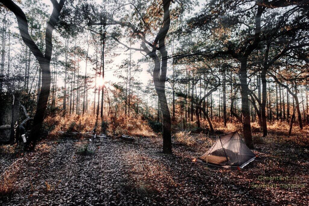 палатка в лесу