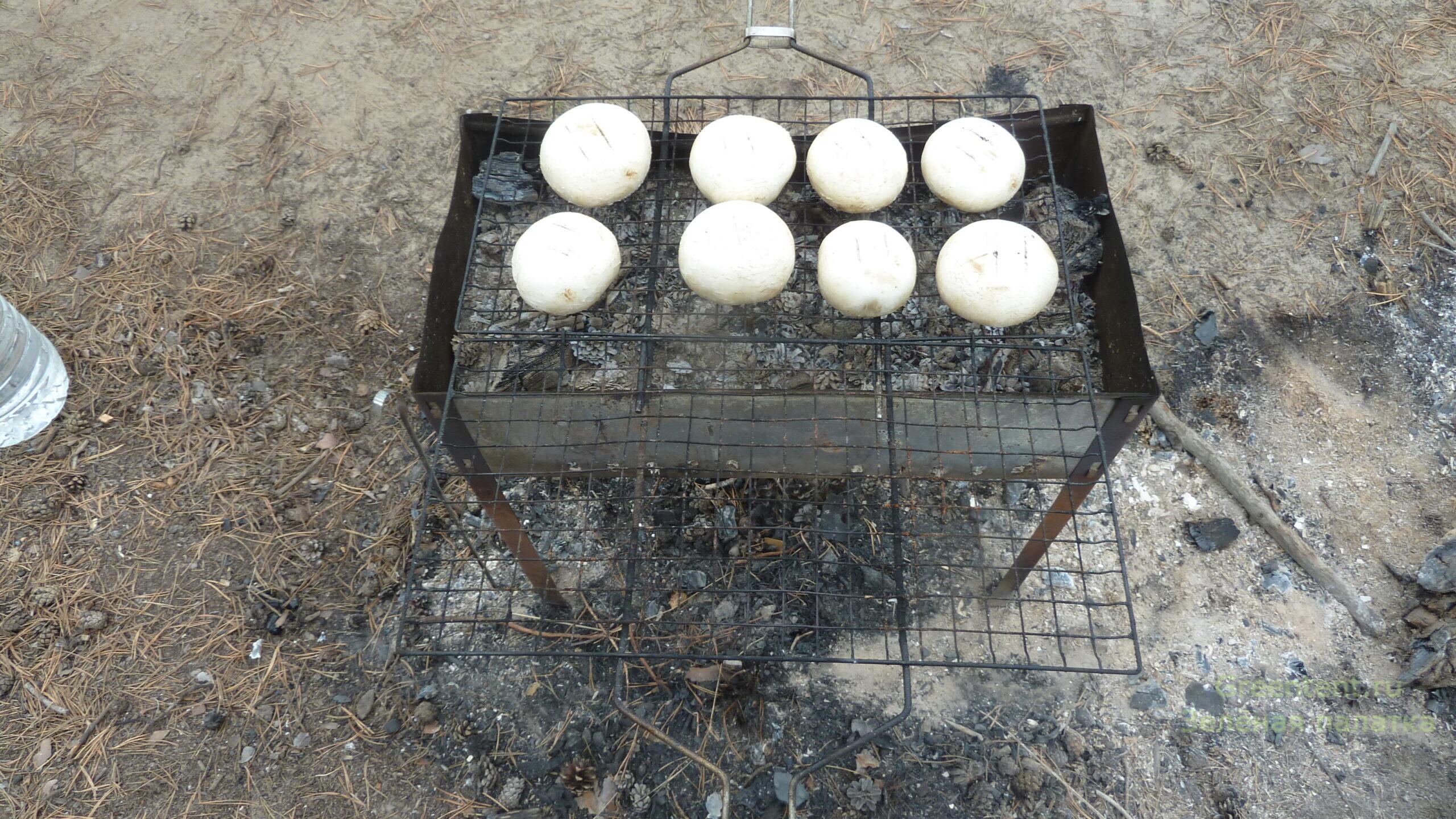 шапниньоны на костре на мангале на природе одтдых дикарями еда рецепт